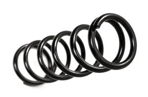 Steering And Suspension - Springs - BDS Suspension - BDS Suspension Jeep Wrangler TJ Coil Springs (Pair) 034204