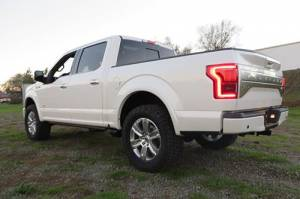 BDS Suspension - BDS 572H 2.5in Front Leveling Kit F150 2009-2020 2WD | F150 2015-2020 4x4 - Image 3